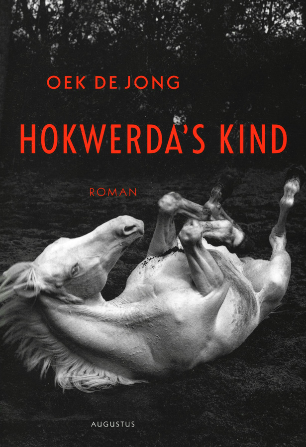 Cover book Oek de Jong Hokwerda's kind