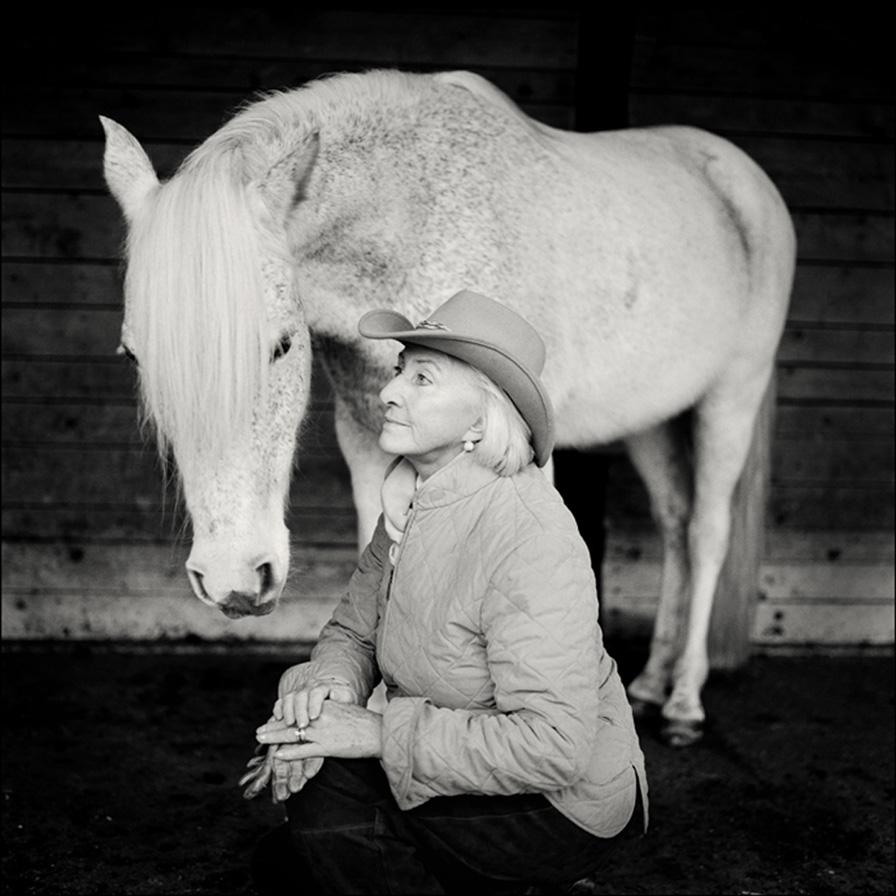 Paardenfluisteraar