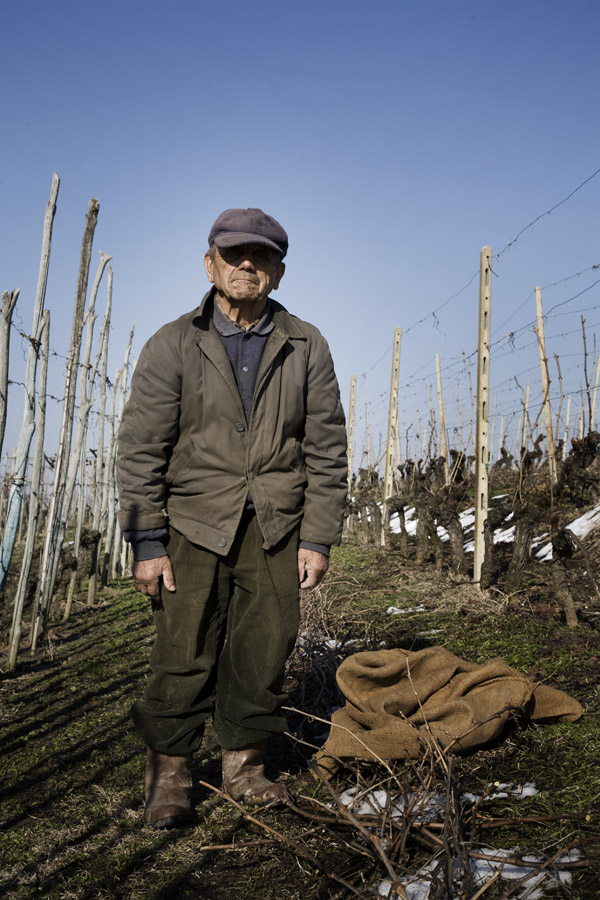Wine farmer, restaurant Toscanini