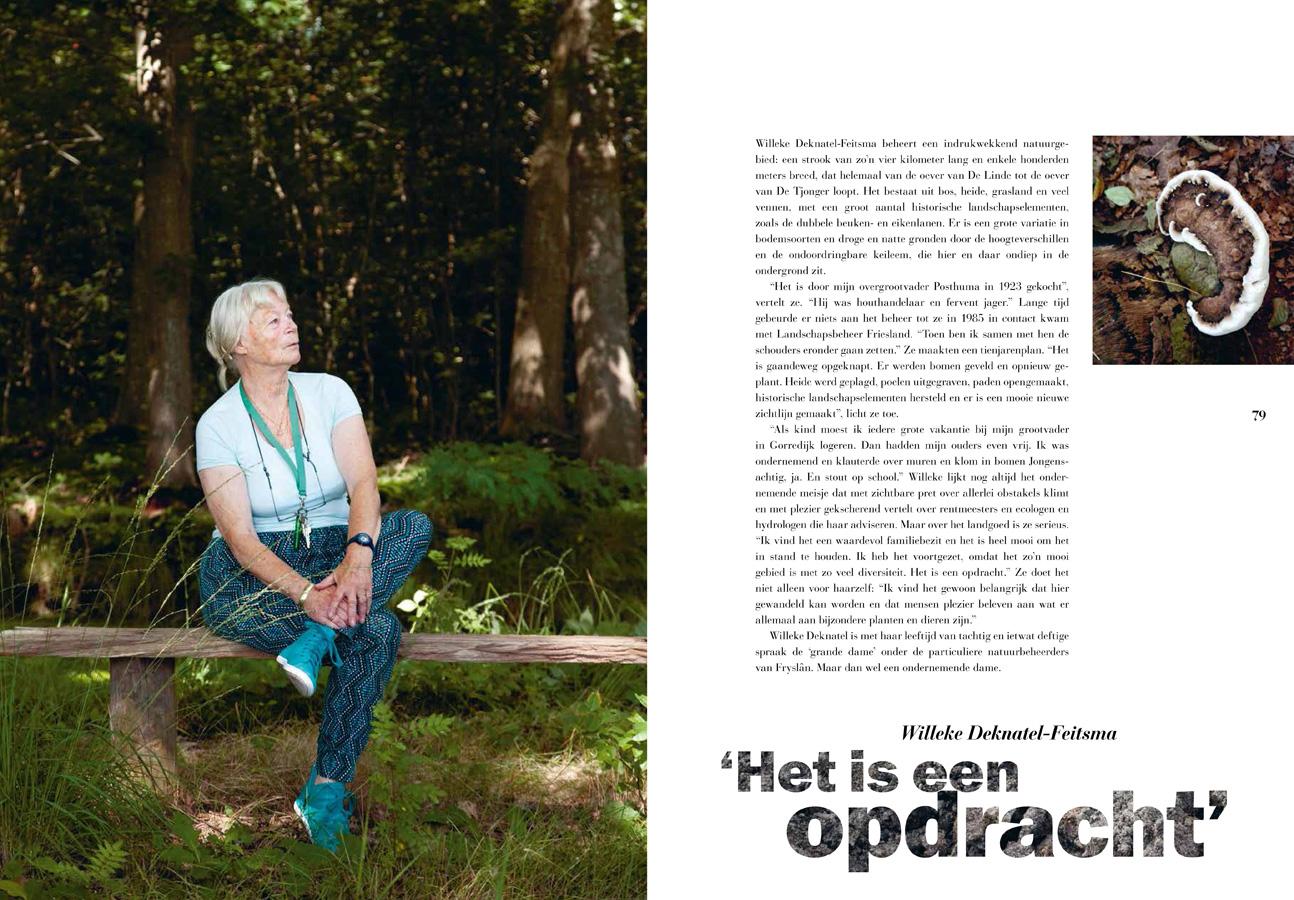 Willeke Deknatel-Feitsma